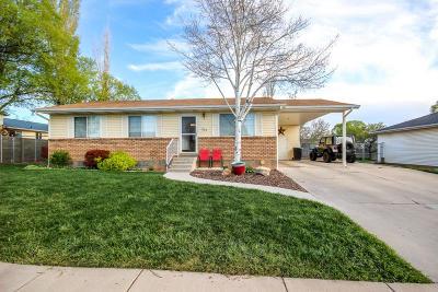 Cedar City Single Family Home For Sale: 273 W 1675 N