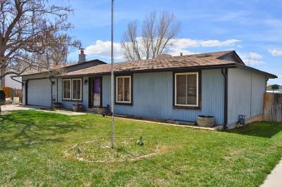 Cedar City Single Family Home For Sale: 1755 N 175 W