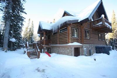 Brian Head Single Family Home For Sale: 391 N Falcon