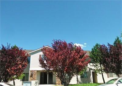 Cedar City Multi Family Home Accepting Backup Offers: 330 N 900 W