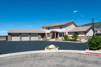 Cedar City Single Family Home For Sale: 1009 E Tamarisk Cir