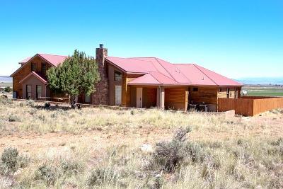 Parowan Single Family Home For Sale: 1132 Pine Canyon Dr