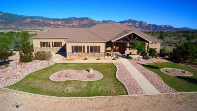 Cedar City Single Family Home For Sale: 6069 S Maverick Way
