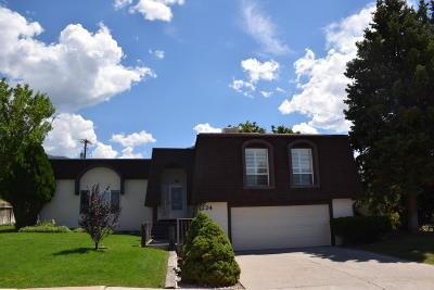 Cedar City Single Family Home For Sale: 224 E Altamira Dr