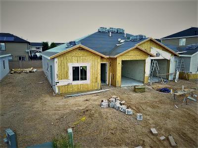 Cedar City Single Family Home For Sale: 1920 W Aaron Tippets Rd