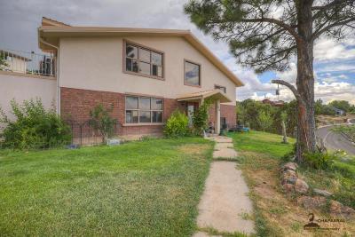 Cedar City Single Family Home For Sale: 236 Casa Loma Ln