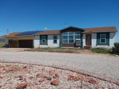 Cedar City Single Family Home For Sale: 3820 W 4800 N