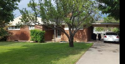 Cedar City Single Family Home For Sale: 320 N 500 W