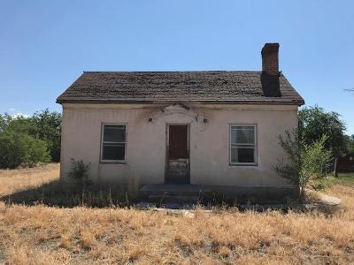 Beaver, Minersville, Milford Single Family Home For Sale: 480 N 100 E