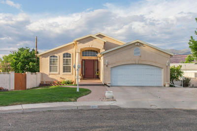 Cedar City Single Family Home For Sale: 1067 S 1265 W