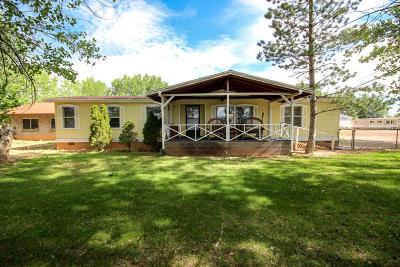 Cedar City Single Family Home For Sale: 2017 N 4650 W
