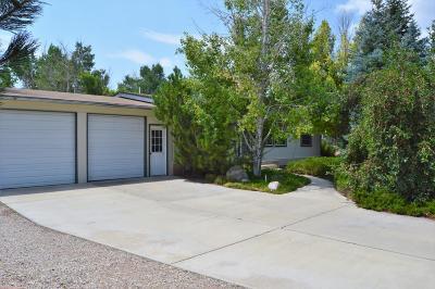 Cedar City Single Family Home For Sale: 3815 W 700 N