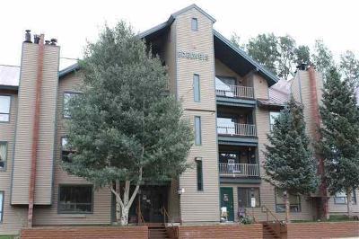 Brian Head Condo/Townhouse For Sale: 651 S Snowflake