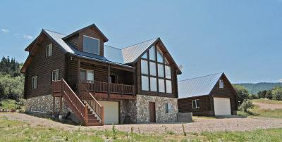 Cedar City Single Family Home For Sale: 2017 S High Mountain View E
