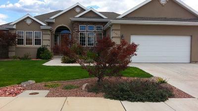 Cedar City Single Family Home For Sale: 2447 Carmel Canyon Dr
