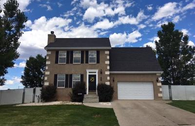 Beaver, Minersville, Milford Single Family Home For Sale: 1065 E 425 North