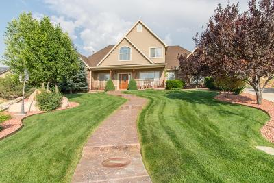 Cedar City Single Family Home For Sale: 2144 Forest Cir