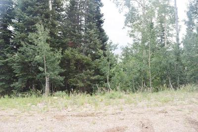 Residential Lots & Land For Sale: 703 W Hunter Ridge Drive