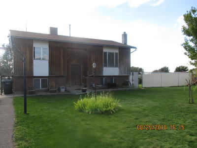 Enoch Single Family Home For Sale: 4499 Mule Train Dr