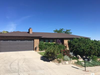 Cedar City Single Family Home For Sale: 282 Ridge Rd