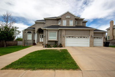 Cedar City Single Family Home For Sale: 2079 N Serviceberry