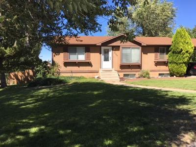 Cedar City Single Family Home For Sale: 432 Pinecone Dr