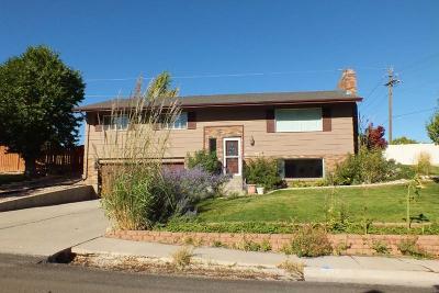 Cedar City Single Family Home For Sale: 810 S Cedar Knolls