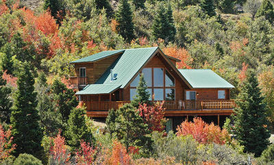 Cedar City Single Family Home For Sale: 815 High Mountain View Dr