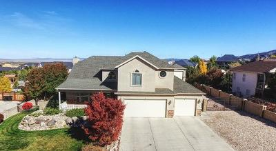 Cedar City Single Family Home For Sale: 887 E Nichols Canyon Rd