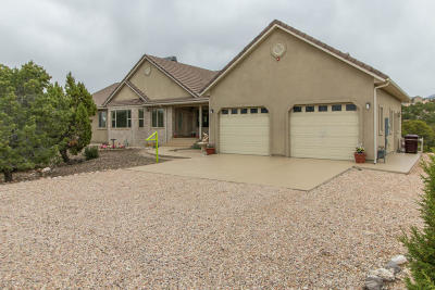 Cedar City Single Family Home For Sale: 1309 S Panorama Dr
