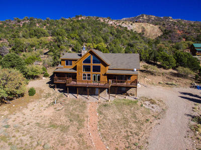Cedar City Single Family Home For Sale: 2101 S High Cedar View
