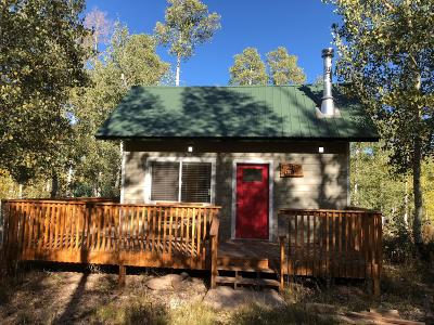 Cedar City Single Family Home For Sale: 4731 S Cedar Mtn Rd