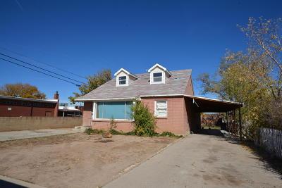Cedar City Single Family Home For Sale: 169 E 200 N