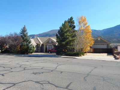 Cedar City Single Family Home For Sale: 1073 S Ridge Rd