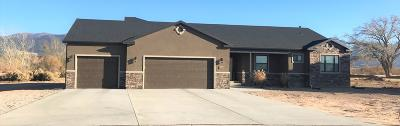 Cedar City UT Single Family Home For Sale: $325,000