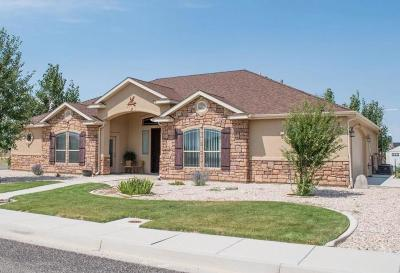 Cedar City UT Single Family Home For Sale: $305,000