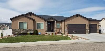 Cedar City Single Family Home For Sale: 3848 W 1425 N