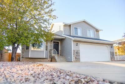 Cedar City Single Family Home For Sale: 2231 N 475 E