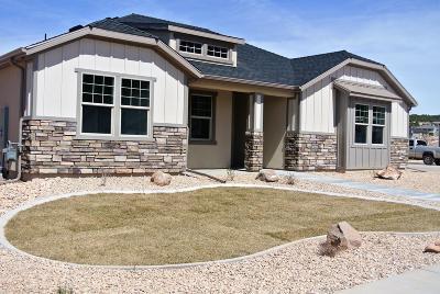 Cedar City Single Family Home For Sale: 2902 W Taba Dr