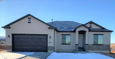 Cedar City Single Family Home For Sale: 2177 Secretariat Way