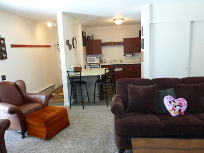 Brian Head Condo/Townhouse Accepting Backup Offers: 356 S Hwy 143