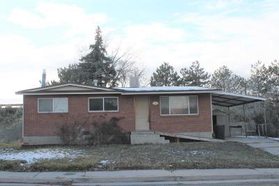 Cedar City Single Family Home For Sale: 1199 Brook St