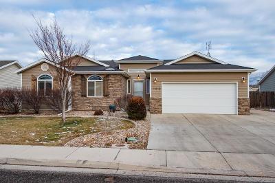 Cedar City Single Family Home For Sale: 102 N 4275 W