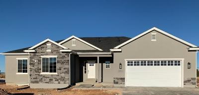 Cedar City Single Family Home For Sale: 3891 Native Dancer Dr