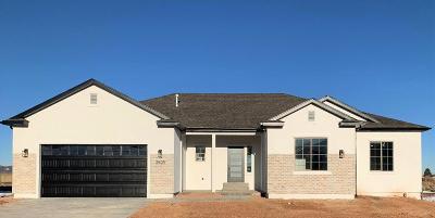 Cedar City Single Family Home For Sale: 3905 Native Dancer Dr