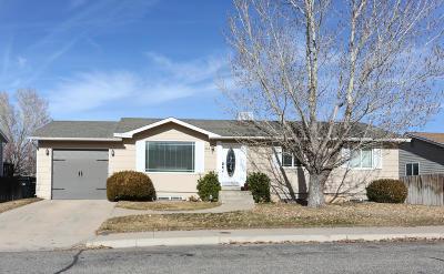 Cedar City Single Family Home For Sale: 338 W 1725 N