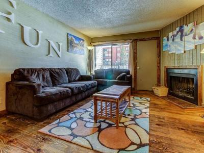 Brian Head Condo/Townhouse For Sale: 385 S Vasels (Fka Brian Head Blvd)