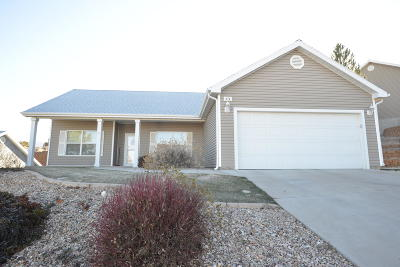 Cedar City Single Family Home For Sale: 372 Pachea Trail