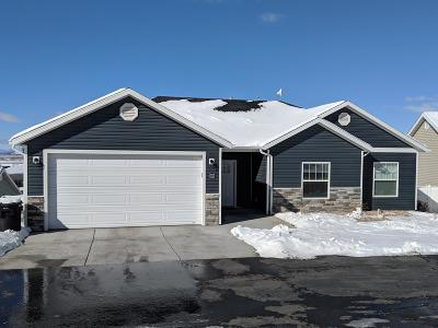 Cedar City Single Family Home For Sale: 297 N Pachea Cir