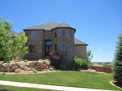 Cedar City Single Family Home For Sale: 504 E Hillview Dr